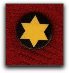 Yellow Star Lapel button