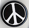 nuclear disarmament lapel button